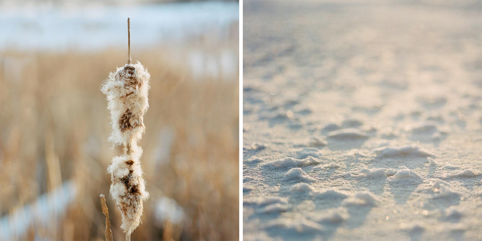 minnesota-winter-landscape-photography-02.jpg