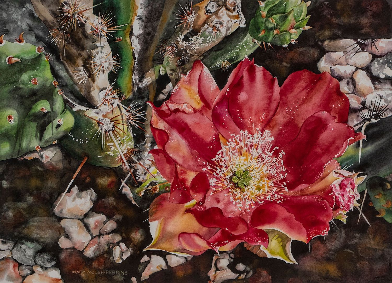 Backyard Surprise, 22 x 30, watercolor on paper