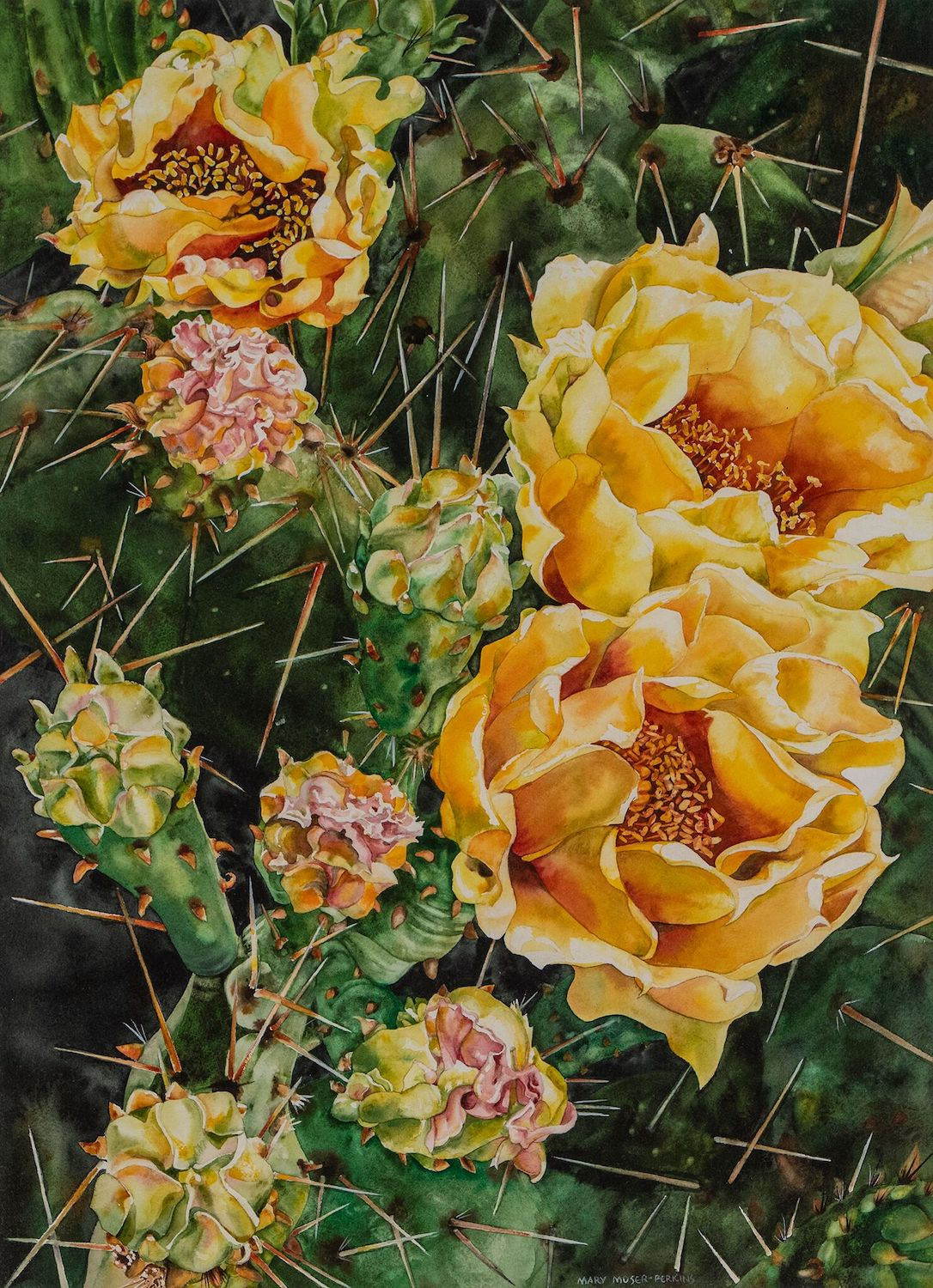 Prickly Pear, 30 x 21, watercolor on paper