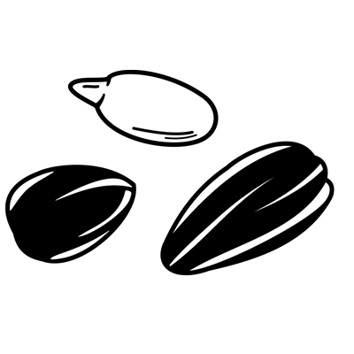 SELENIUM-with-Sunflower-Seeds---Food-Mood.png