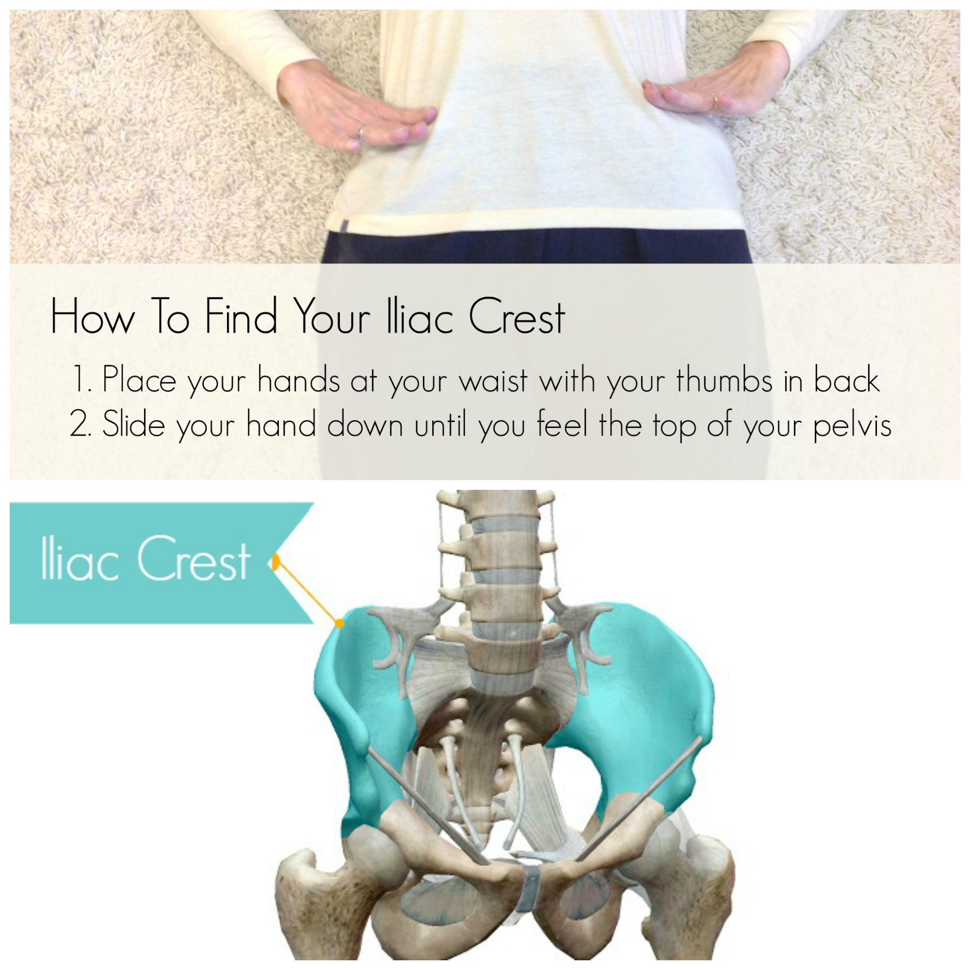 Find Your Iliac Crest Large.jpg