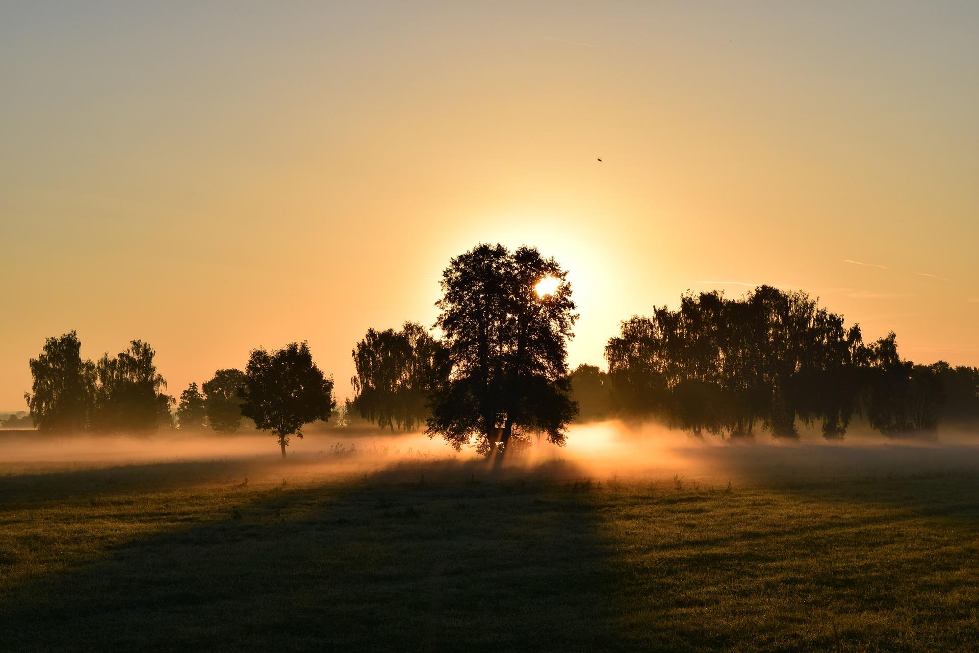 Take 5 at Sunrise.jpg