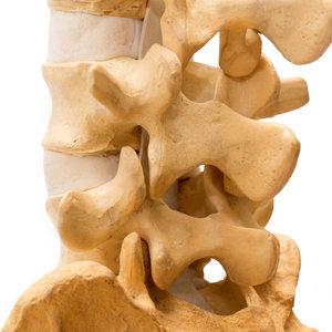 Unwind Your Spine