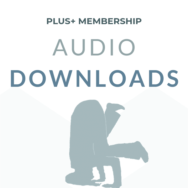Audio Downloads.png