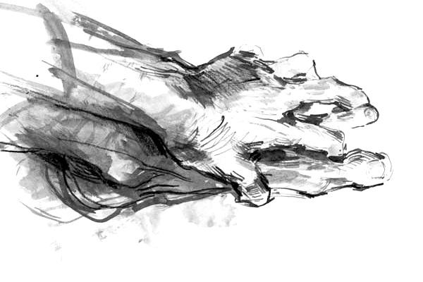 Awareness-Through-Movement-Membership-Hand-Foot.jpg