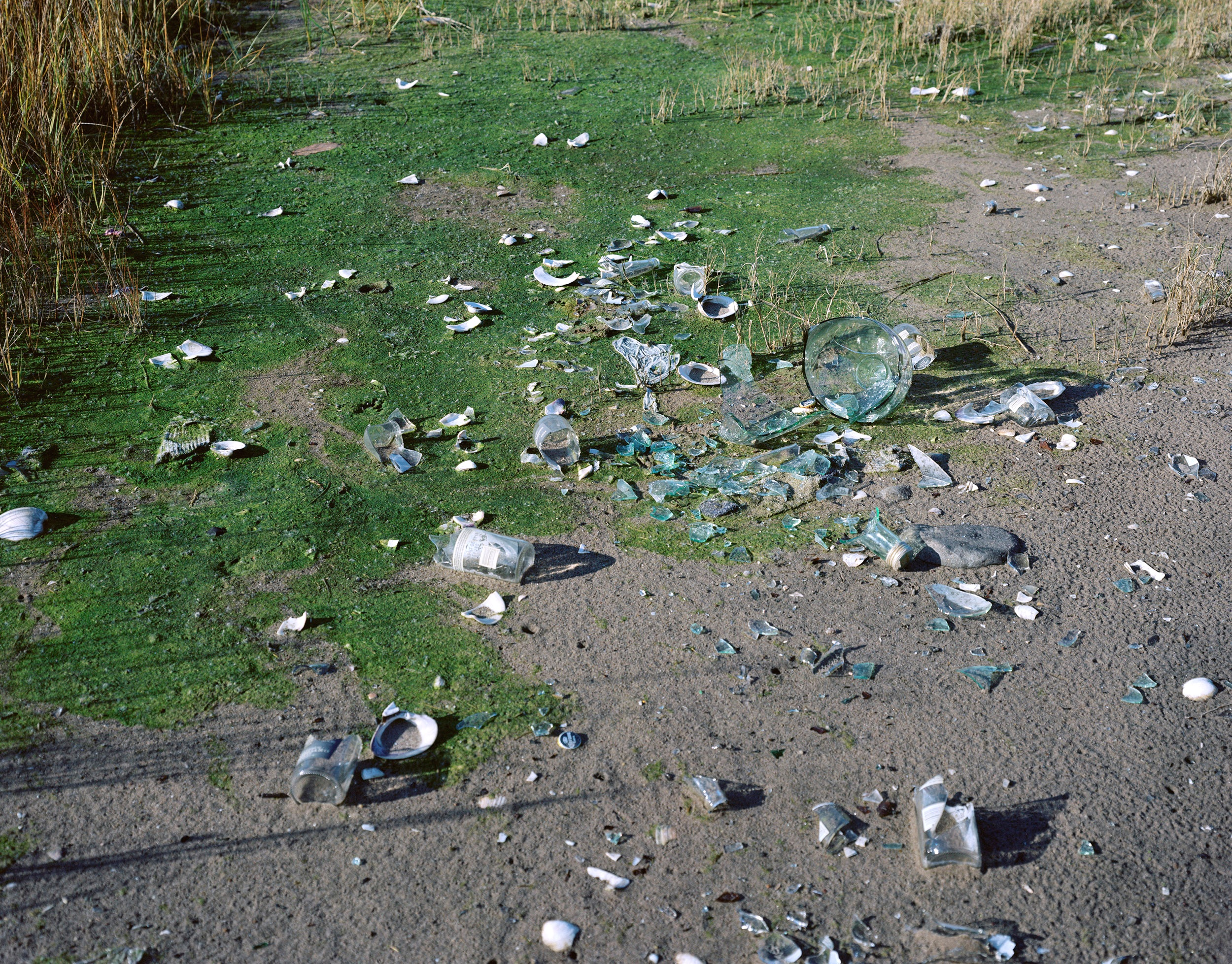 marine broken glass copy.jpg