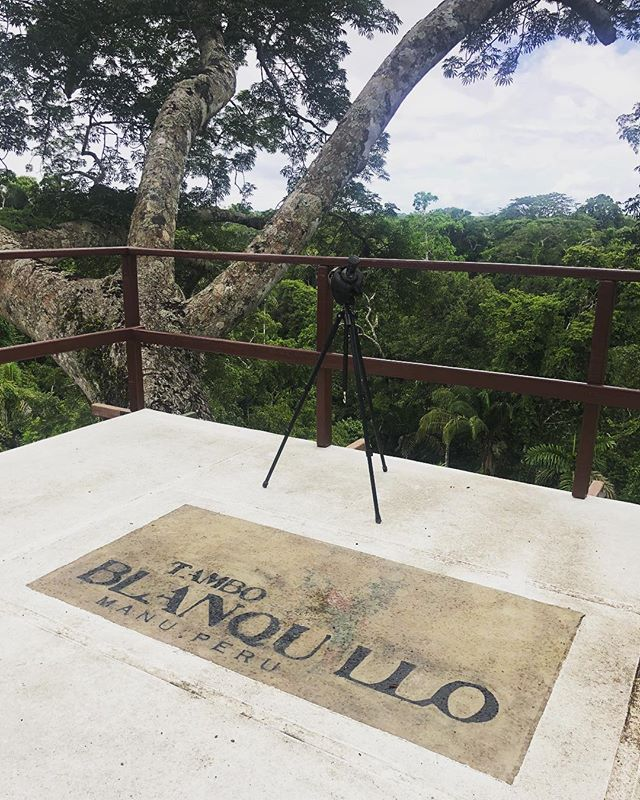 Morning views 👀 @ Camungo Observation Tower