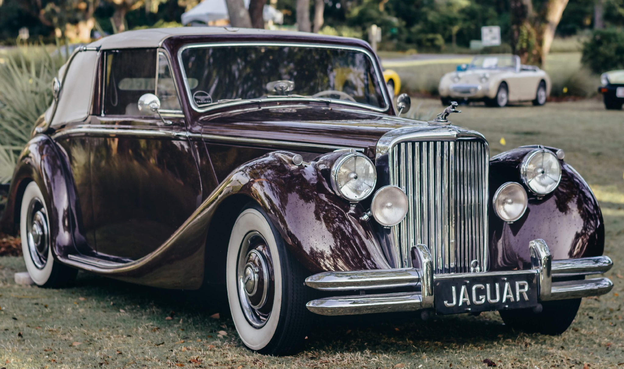 """""""Ask the Woman Who Owns One"""" - Beth Grosso's '49 Jaguar Mk V DHC"""