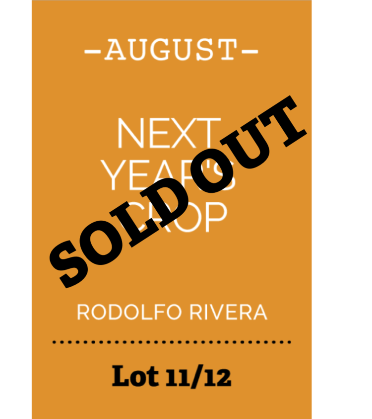 august_soldout.png