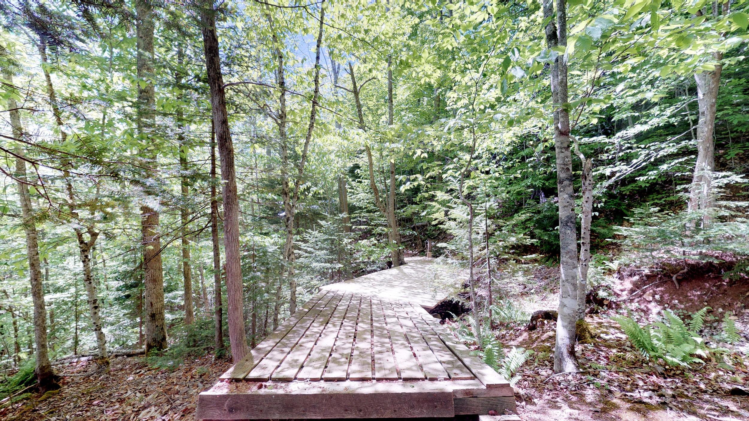 Trails End Cottage(8).jpg
