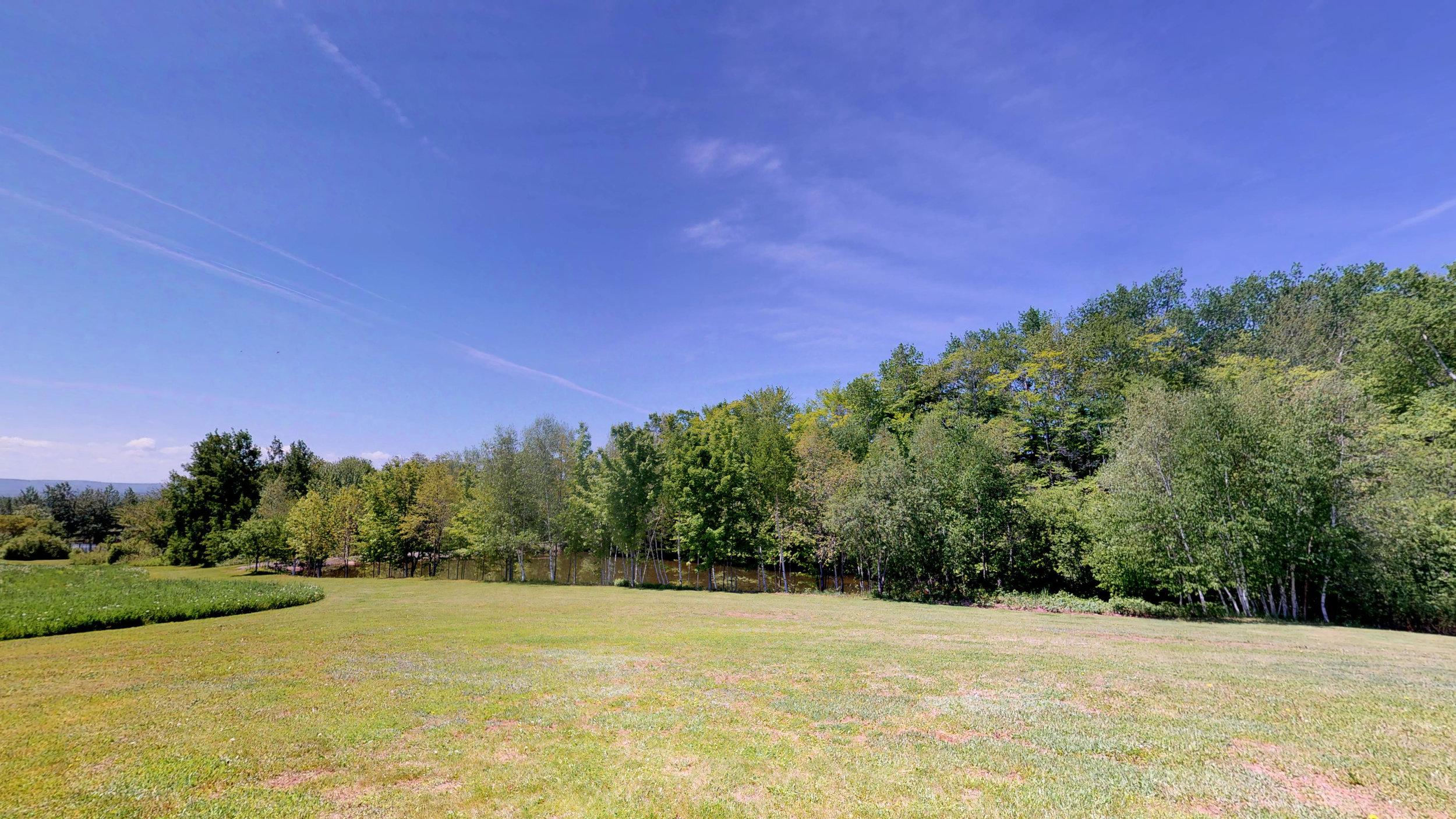 Back Lawn & Field(3).jpg