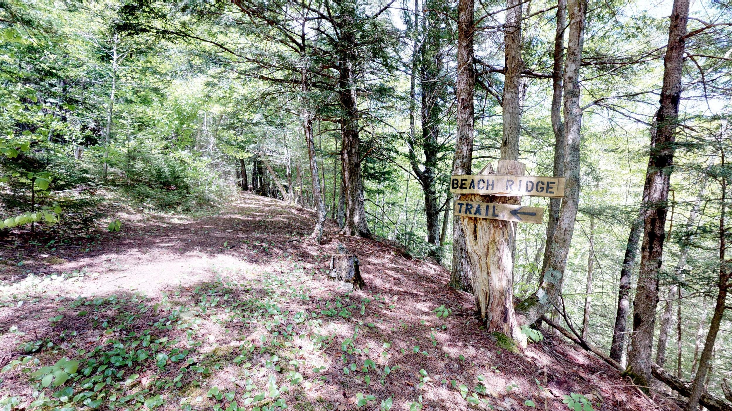 Beach Ridge Trail(2).jpg