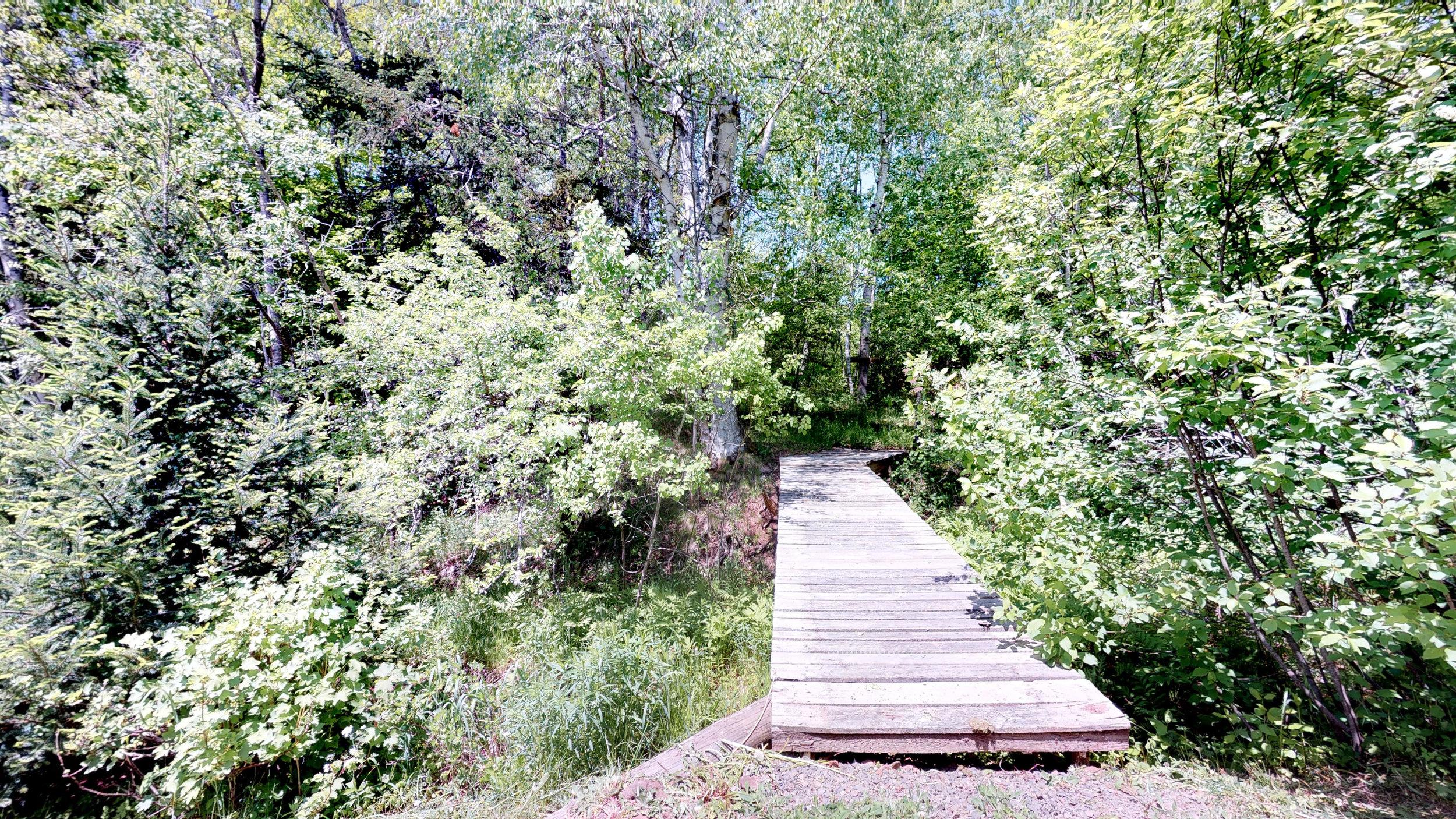 Bunny Bridge.jpg