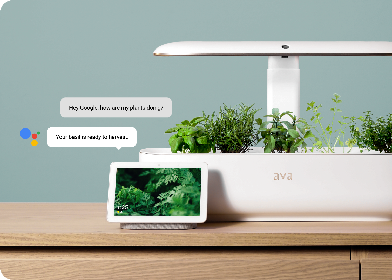 """The Smartest Garden Yet - The AVA byte features optimized horticultural lighting designed specifically for fast plant growth and smart watering cycles that adapt to your plants. A built-in camera records time lapse videos of your plants. Even better, the device is smart home enabled for Google Home and Alexa - just ask """"How's my garden?"""""""