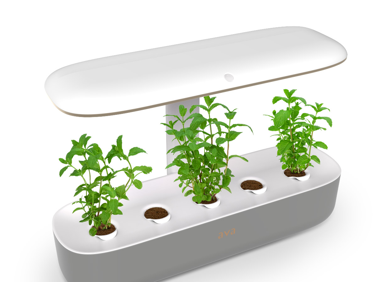 Byte Packaging - Angled view 070119 -with plants-bg-3.jpg