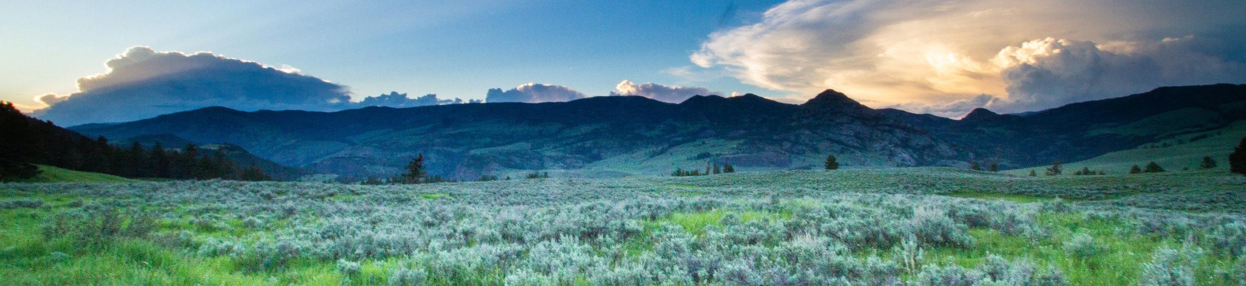 Yellowstone National Park | Wyoming | 2018