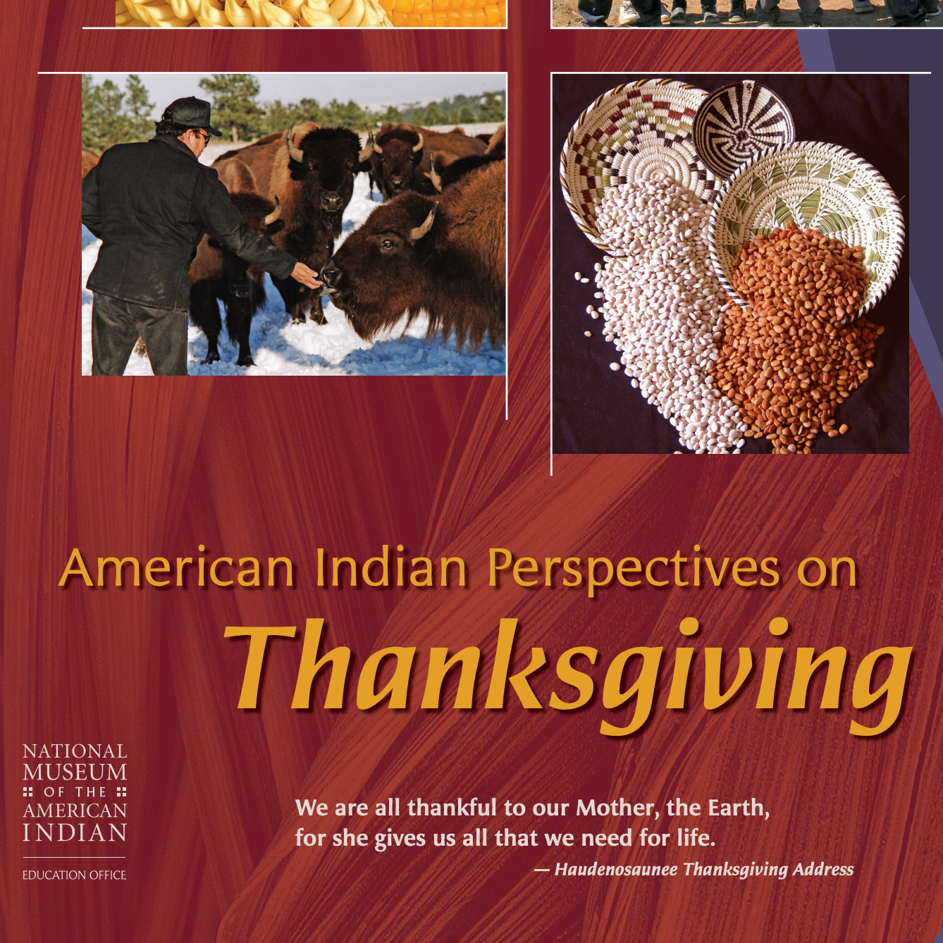 This resource from the National Museum of the American Indian is intended for teachers of grades 4-8, but there is great information for parents of children of all ages as well.