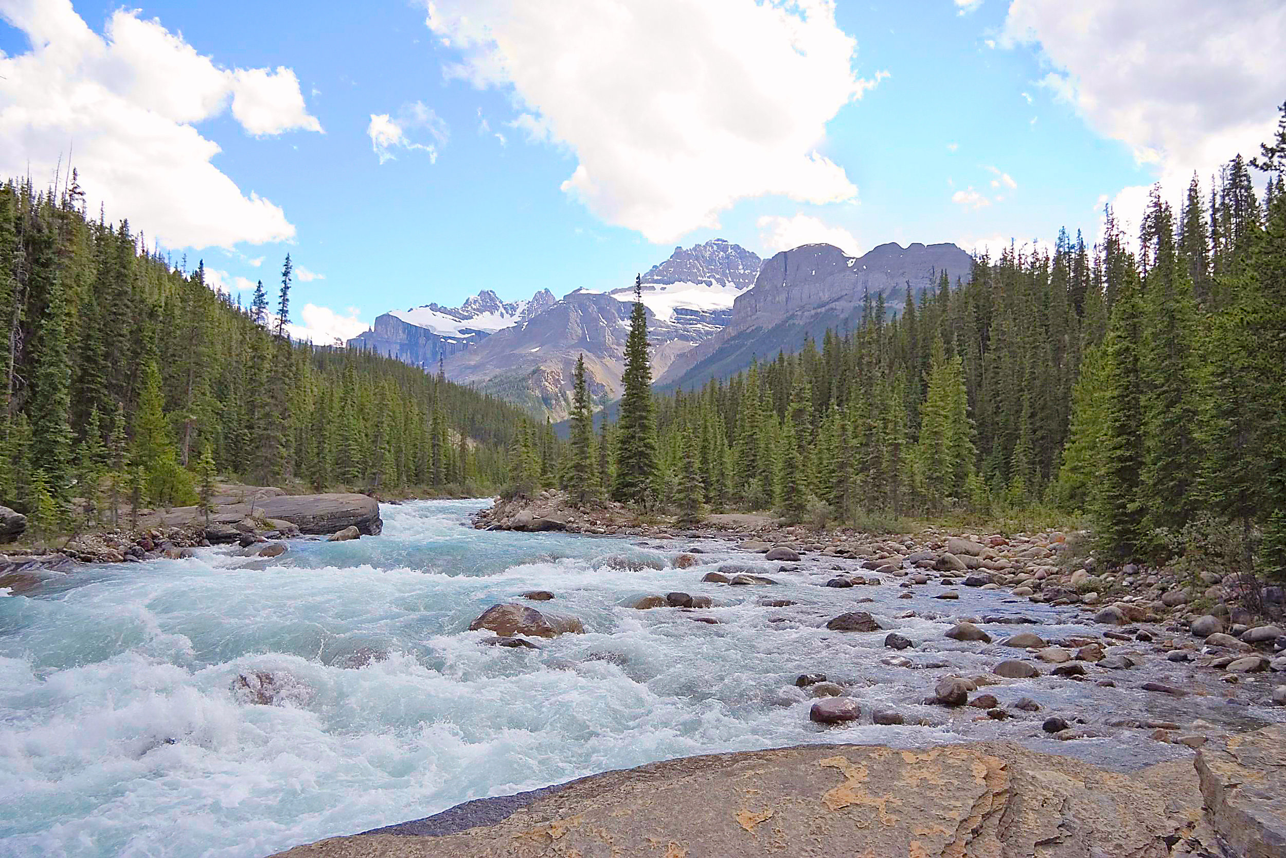 1858410 - rapid mistaya river - banff national park, canada -