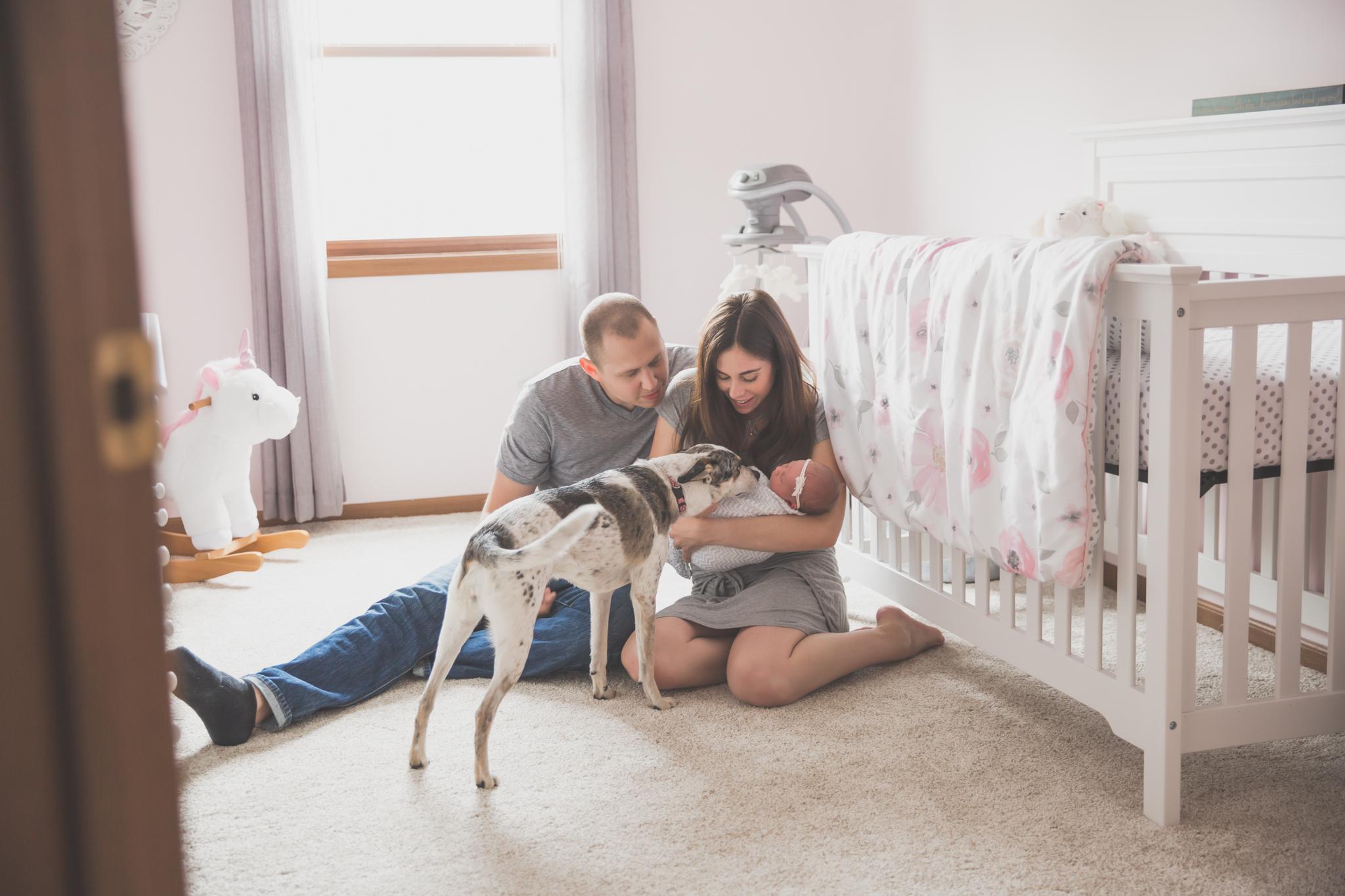 Newborn lifestyle maternity studio Session Cara Peterson Photography Rockford IL-6.jpg