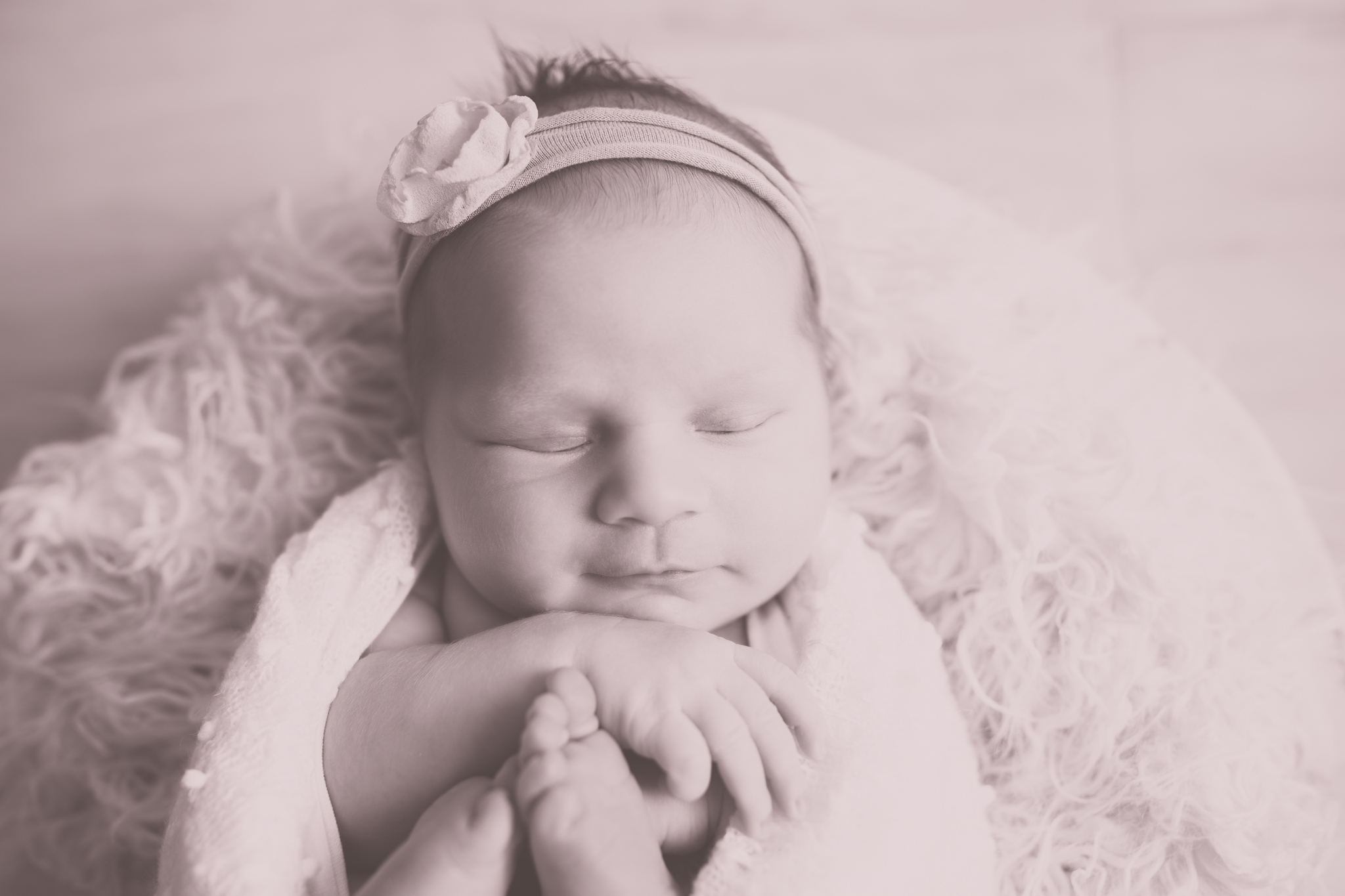Newborn Photography Nuetral Big Sister | Cara Peterson Photography Rockford IL-7.jpg