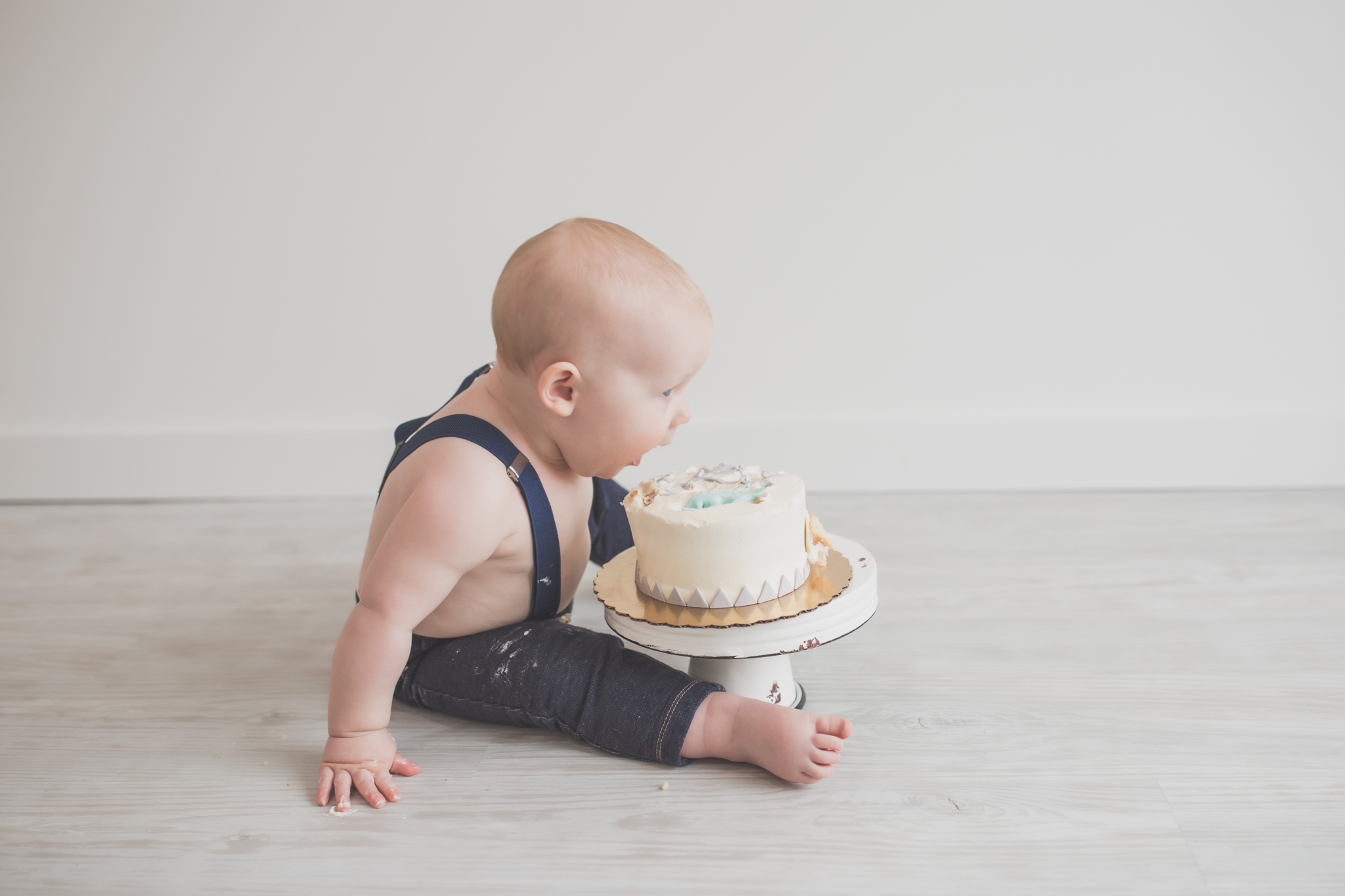 Cade 1 Year Old Cake Smash Milestone Session Cara Peterson Photography Rockford IL -29.jpg