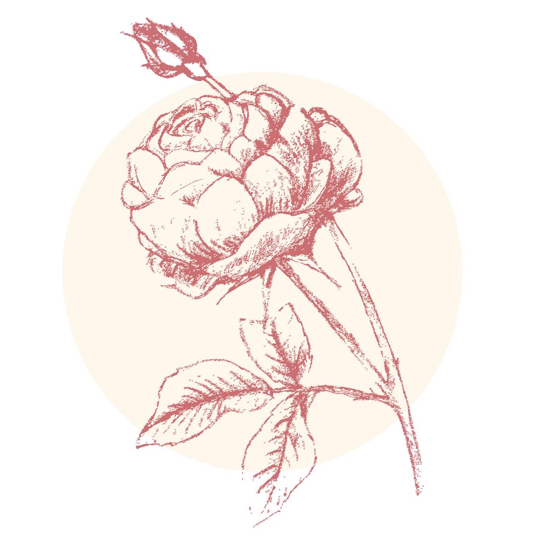 rose_brightest.jpg