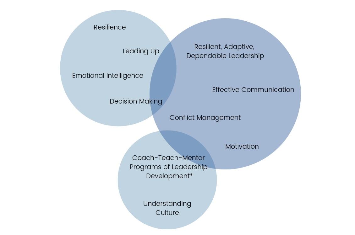 OHC Executive Development Topics.png