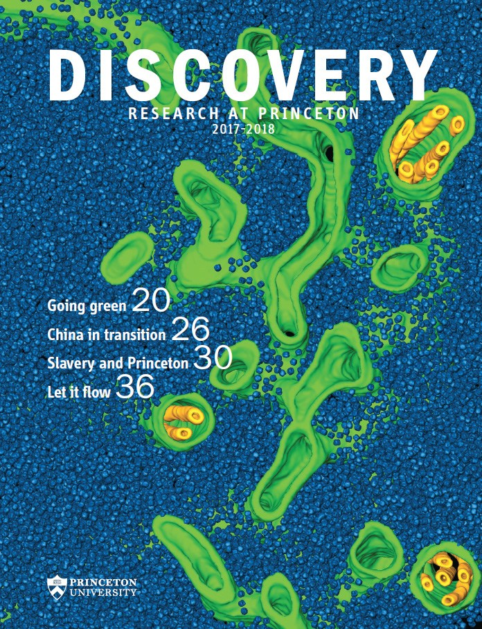 Discovery_2017_coverimage.jpg
