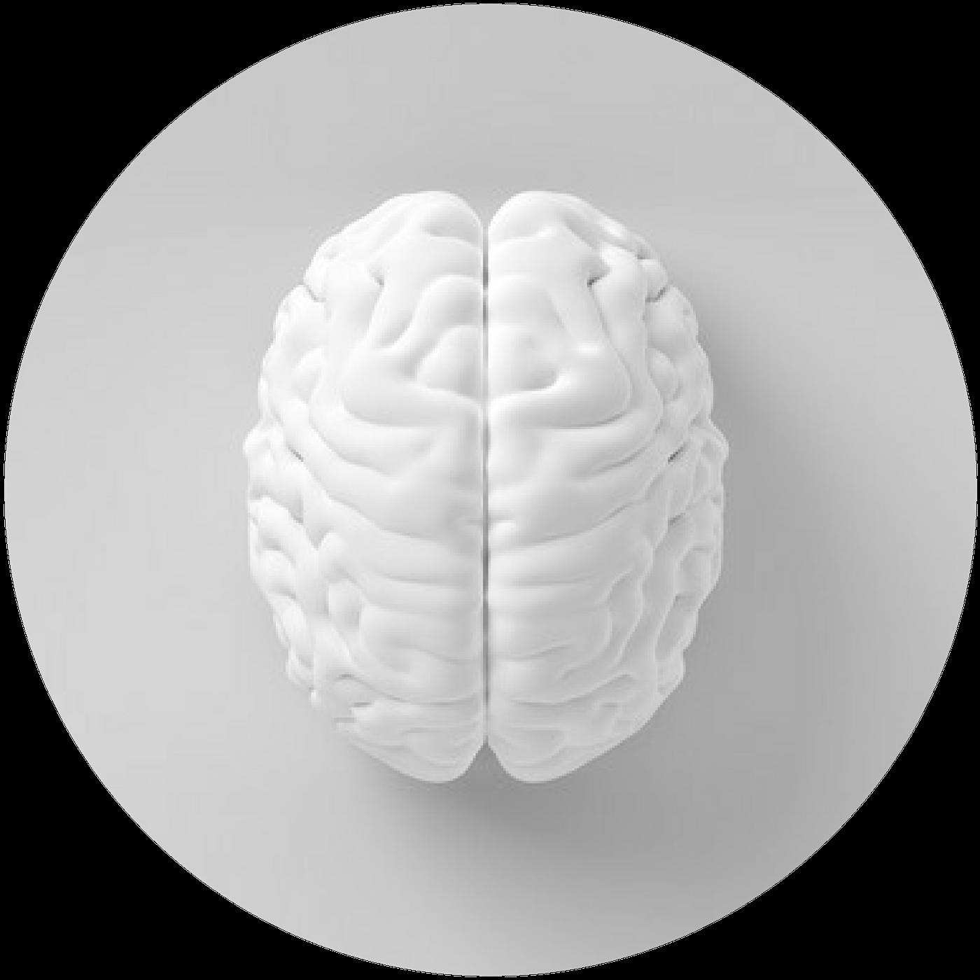 Florence GAILLARD-BIGOT   Neuropsychiatre