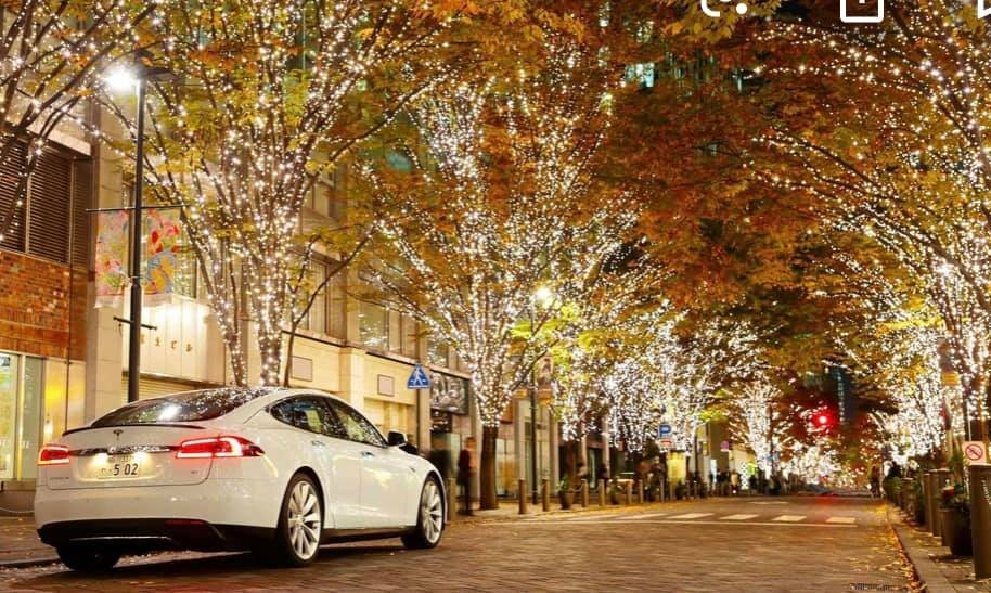 Fall Drive.jpg