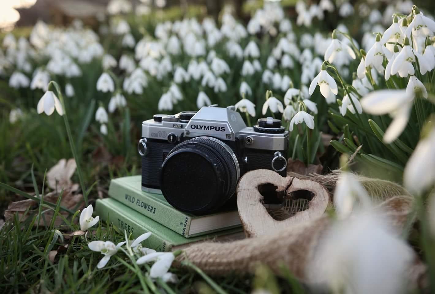 social media photography Derbyshire