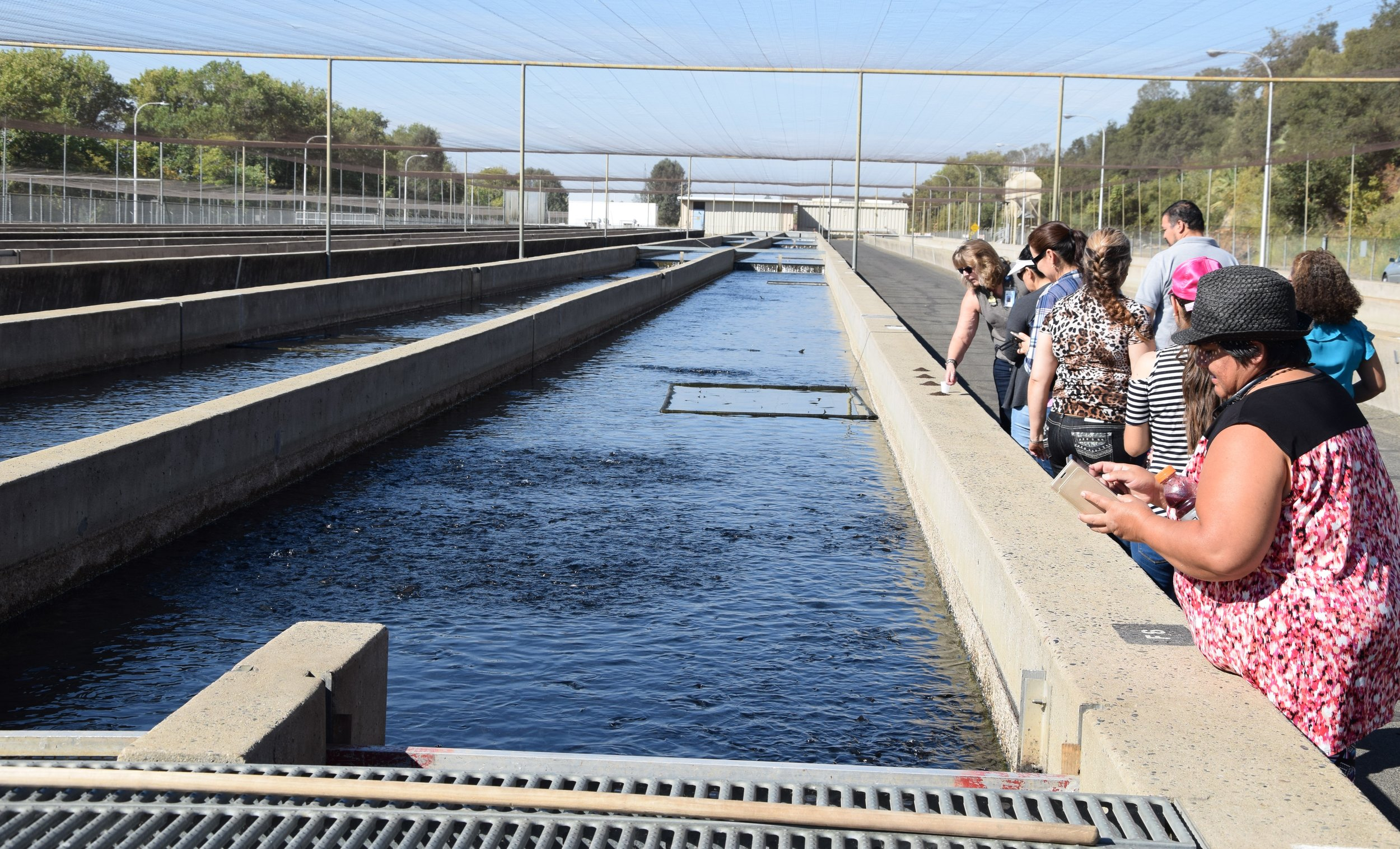 Fish Hatchery, Oroville, CA -
