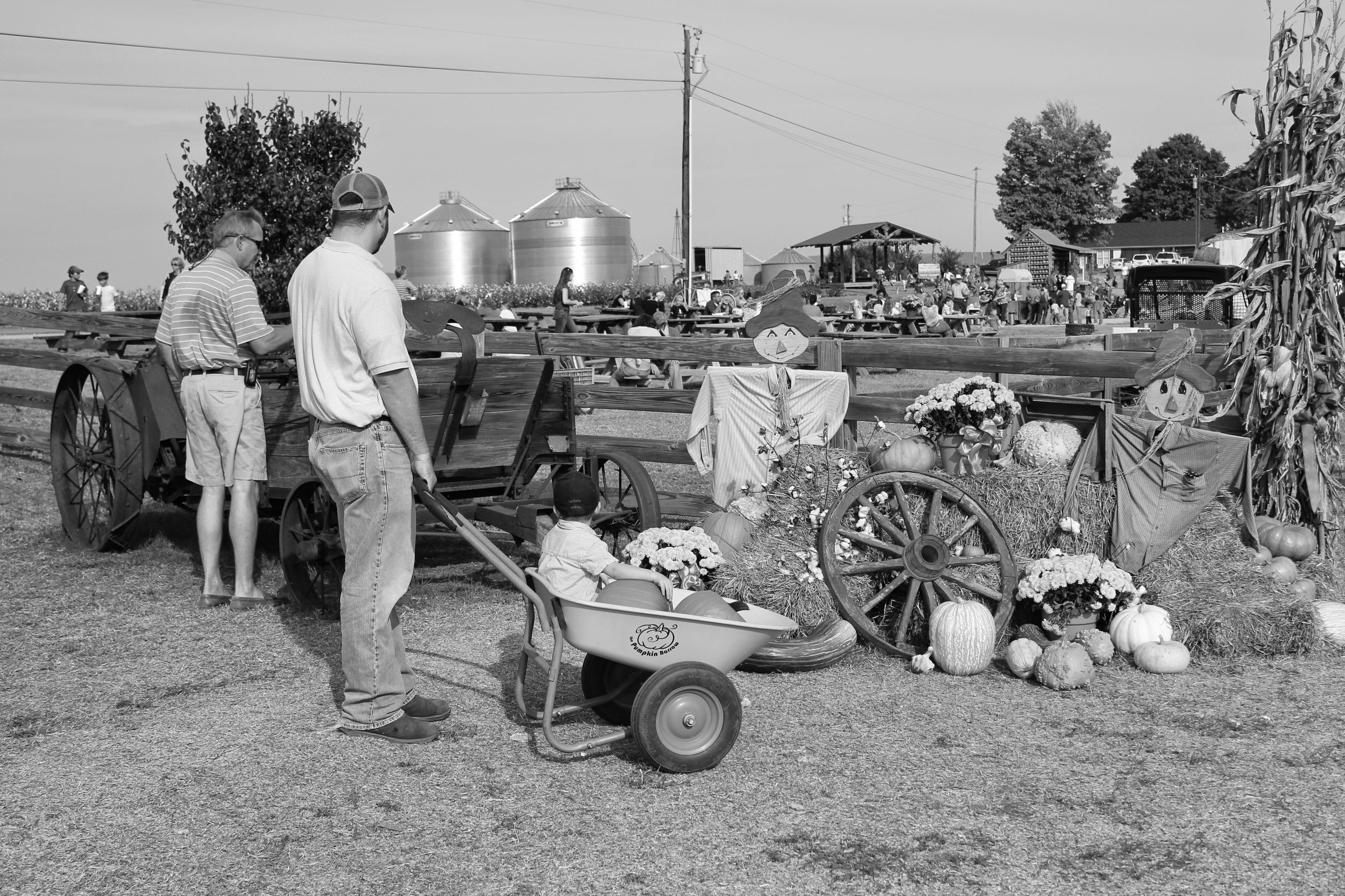 Old-time, high value farming in action.