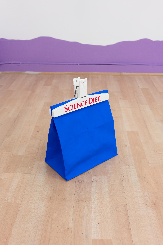 Sarah Hotchkiss + Stephanie Rohlfs,  Science Diet , 2018, Paper bag, plastic clip, gouache, audio loop, 12 x 12 x 7 in.