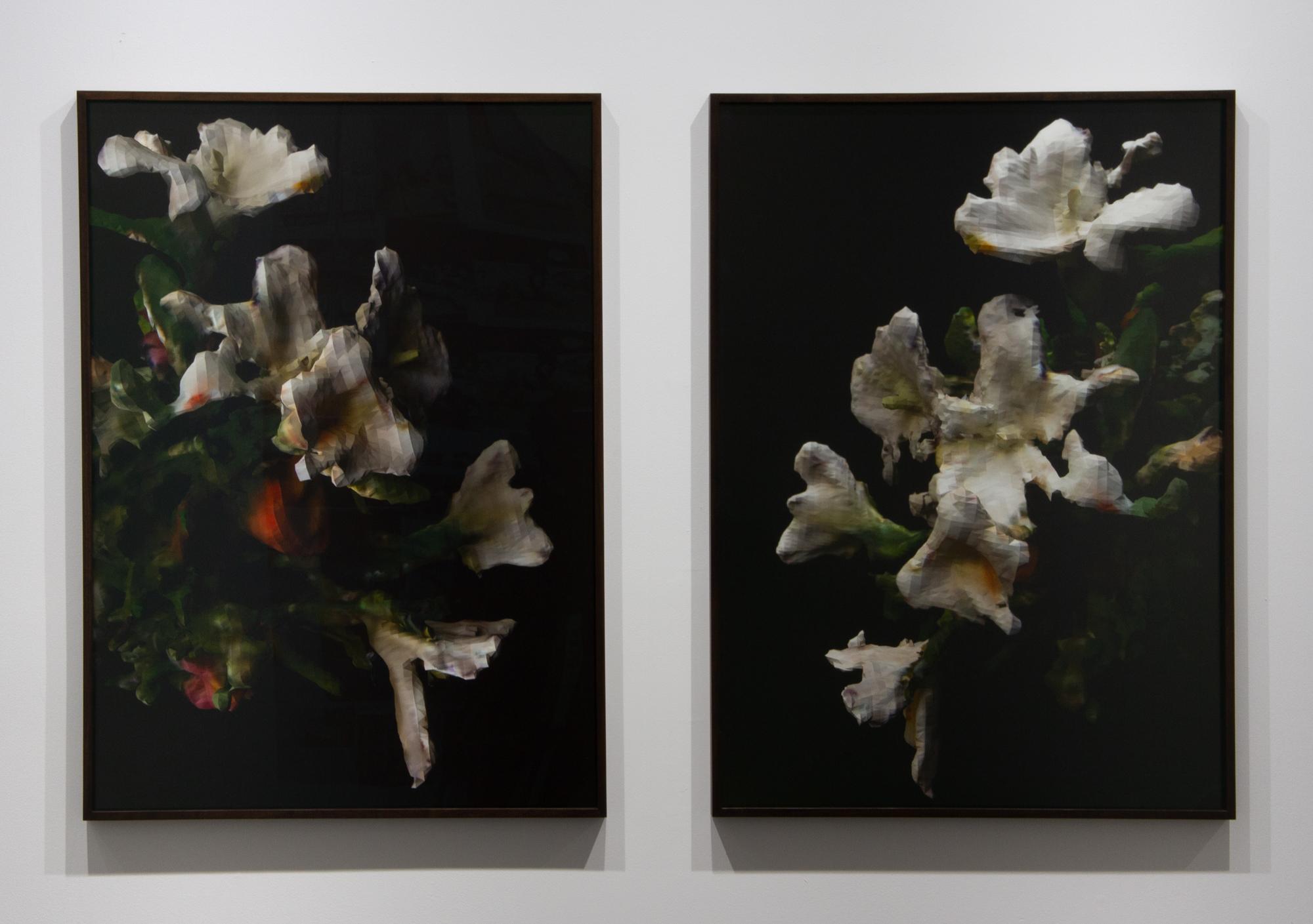 Rhonda Holberton, Left:  Lilium Candidum, Rosa 'Madame A. Meilland', Alstroemeria (Night I),  2018, Archival Pigment Print, 28 x 39 in. (framed), ed. of 3 + 2 A.P. Right:  Lilium Candidum, Rosa 'Madame A. Meilland', Alstroemeria (Night II) , 2018, Archival Pigment Print, 28 x 39 in. (framed), ed. of 3 + 2 A.P.