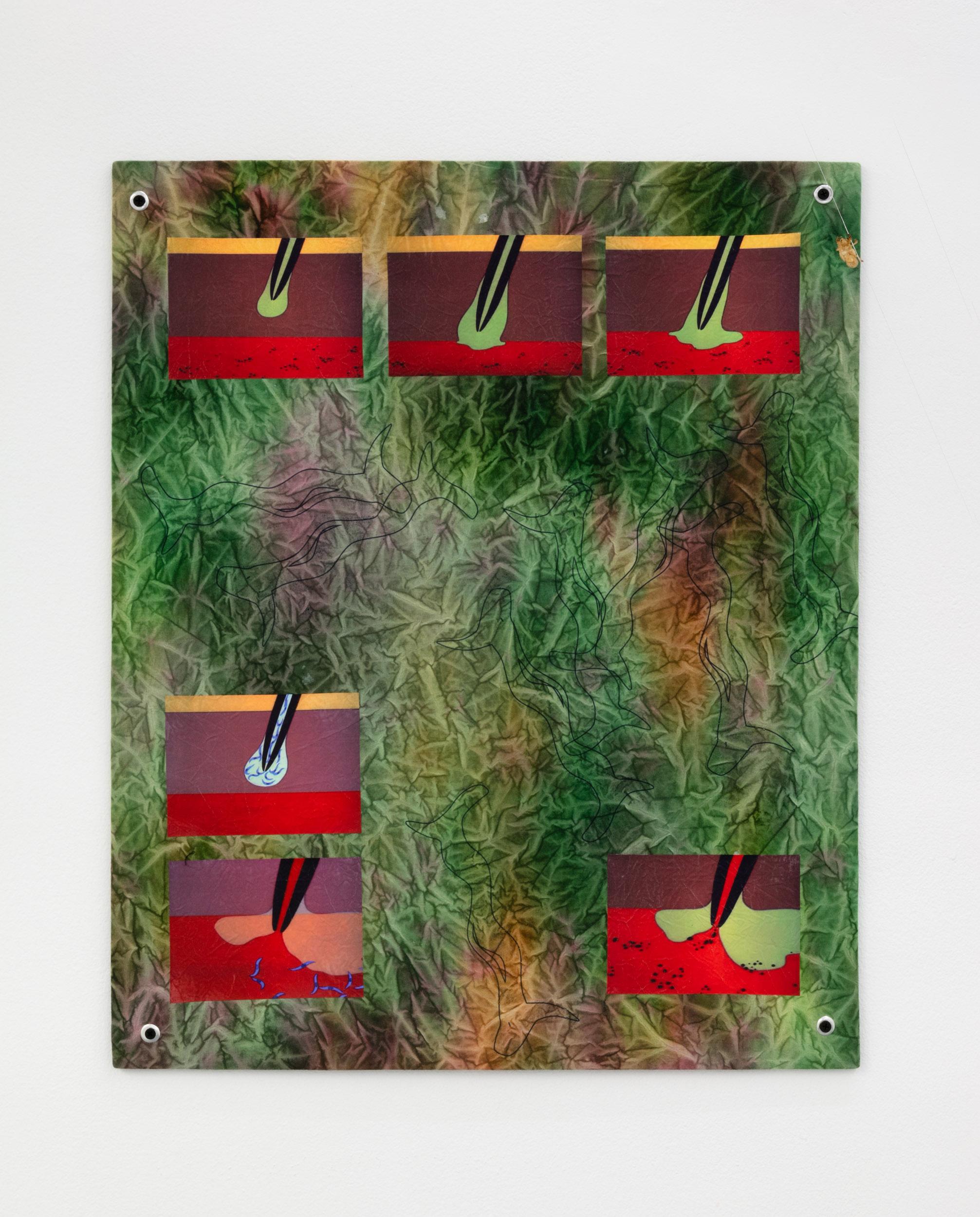 Elif Saydam,  I, pathogen , 2019, Inkjet transfer, aluminium grommets on dyed canvas, mounted on poplar board