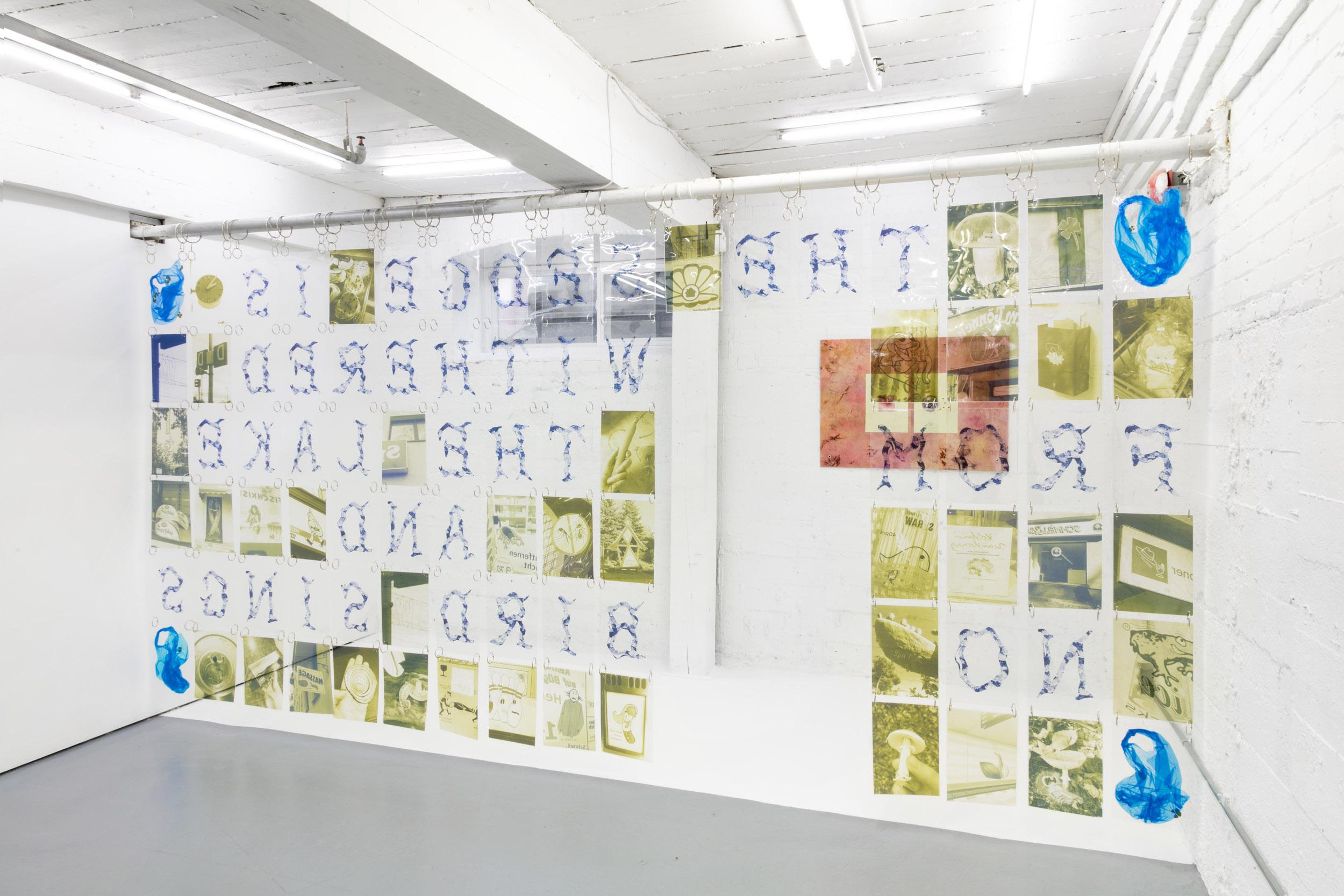 Elif Saydam,  La belle dame sans merci , 2019, Laminated inkjet prints on acetate; steel rings