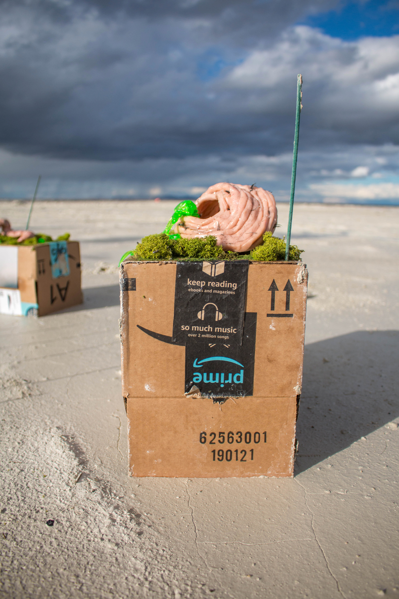 Ian Bruner,  three dollar narrative (plus eternal shipping) , 2019, Amazon box, clay, thread, melted plastic, fake mosses, fake eyelashes adhesives, photograph, light, incense