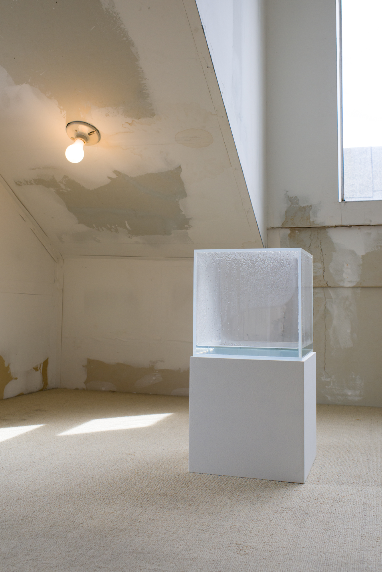 Hans Haacke,  Condensation Cube , 1971. Clear acrylic, distilled water, climate in area of display, 10 x 10 x 10 inches. Courtesy of the artist and Paula Cooper Gallery, New York. Private collection, San Francisco; Photo: Preston/Kalogiros; Courtesy of The 500 Capp Street Foundation.
