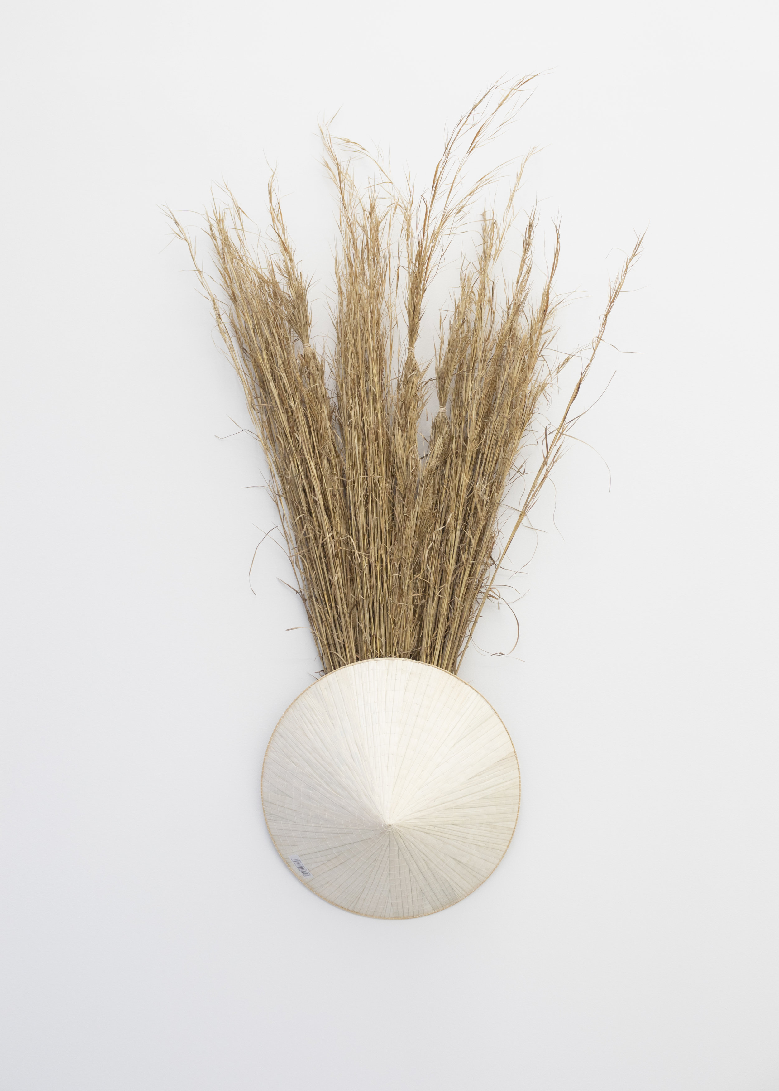 Millian Giang Lien Pham,  Preforge: 9 Stages (One) , 2019. Grass, conical hat