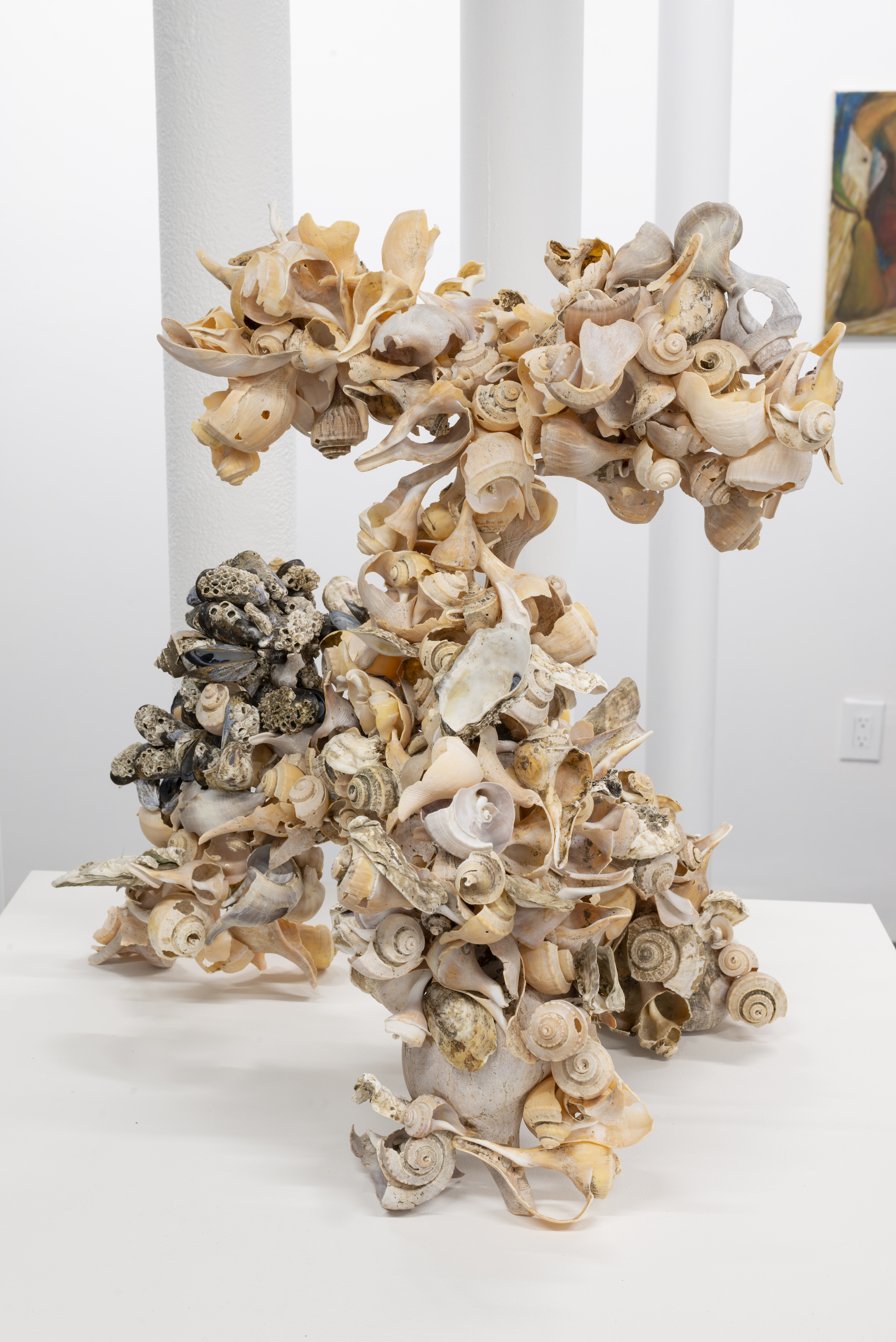 Mitchell Algus.  The Anti-Sea No. 22 , 2018, channeled whelk (Busycotypus canaliculatus), blue mussel (Mytilus edulis), eastern oyster (Crassostrea virginica), Atlantic acorn barnacle (Semibalanus banalnoides), epoxy, collected Bayville, NY 12 x 15 x 22 inches