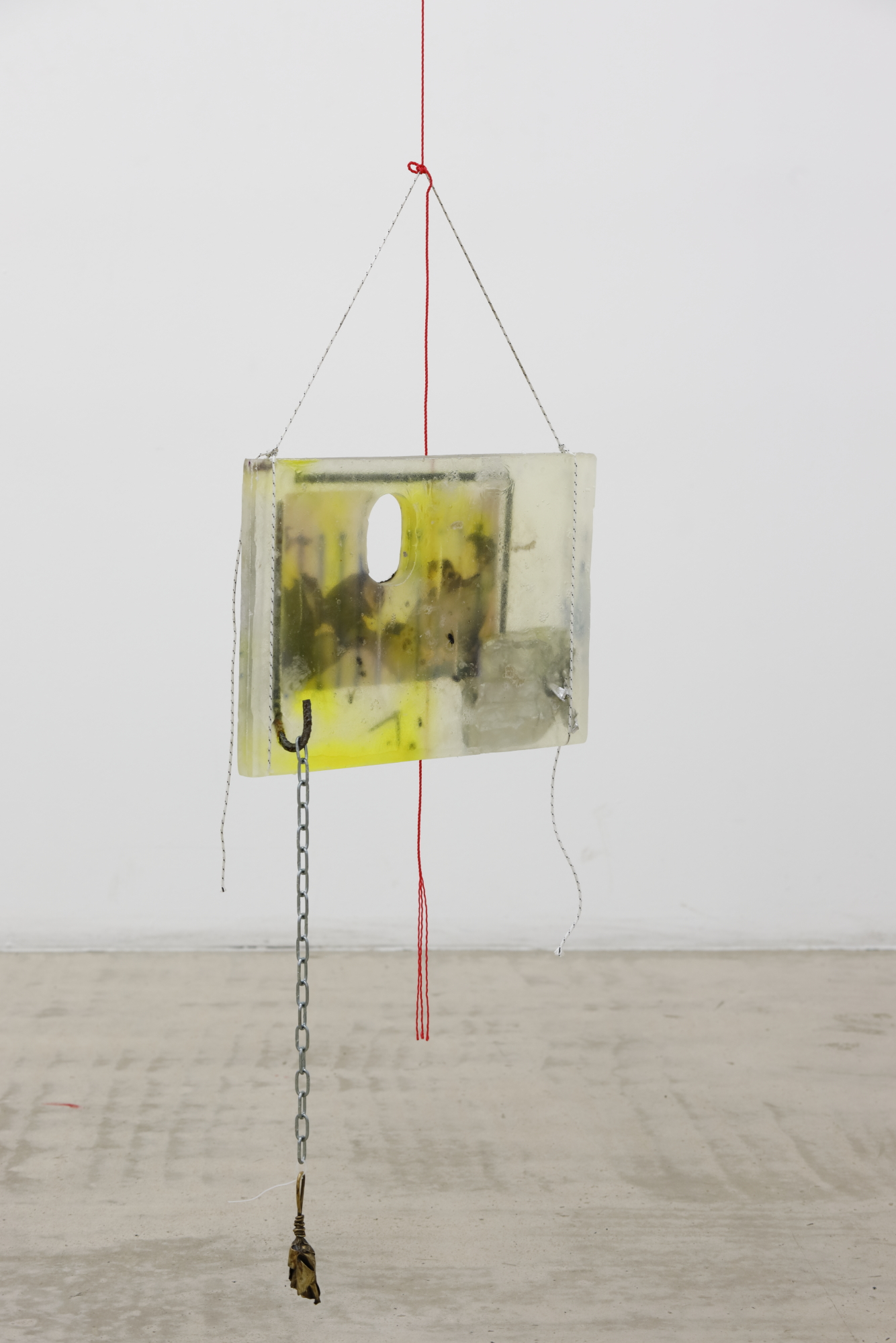 "Evita Vasiļjeva, Jaakko Pallasvuo, ""Untitled"", 2019, soap, string, steel, laser prints, plastic, cardboard, aluminum, insects, pigments"