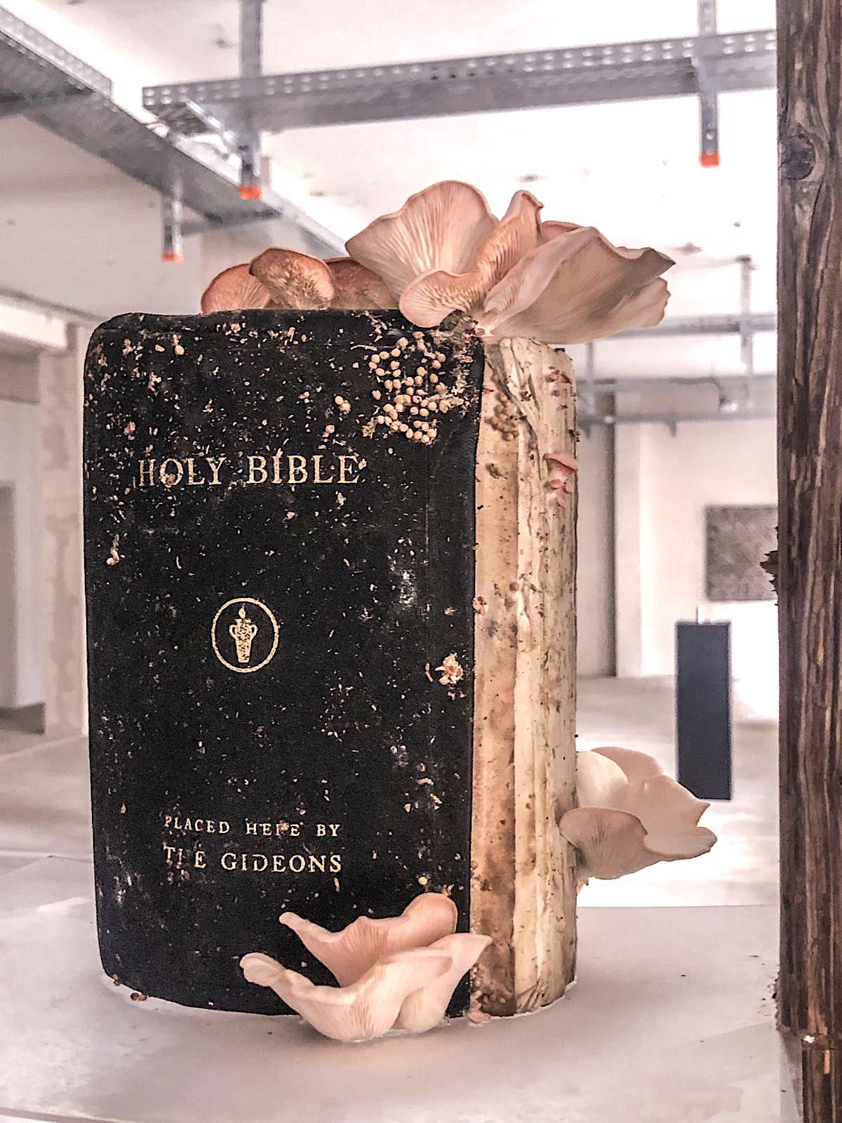 Sam Shoemaker: Untitled (Bible)