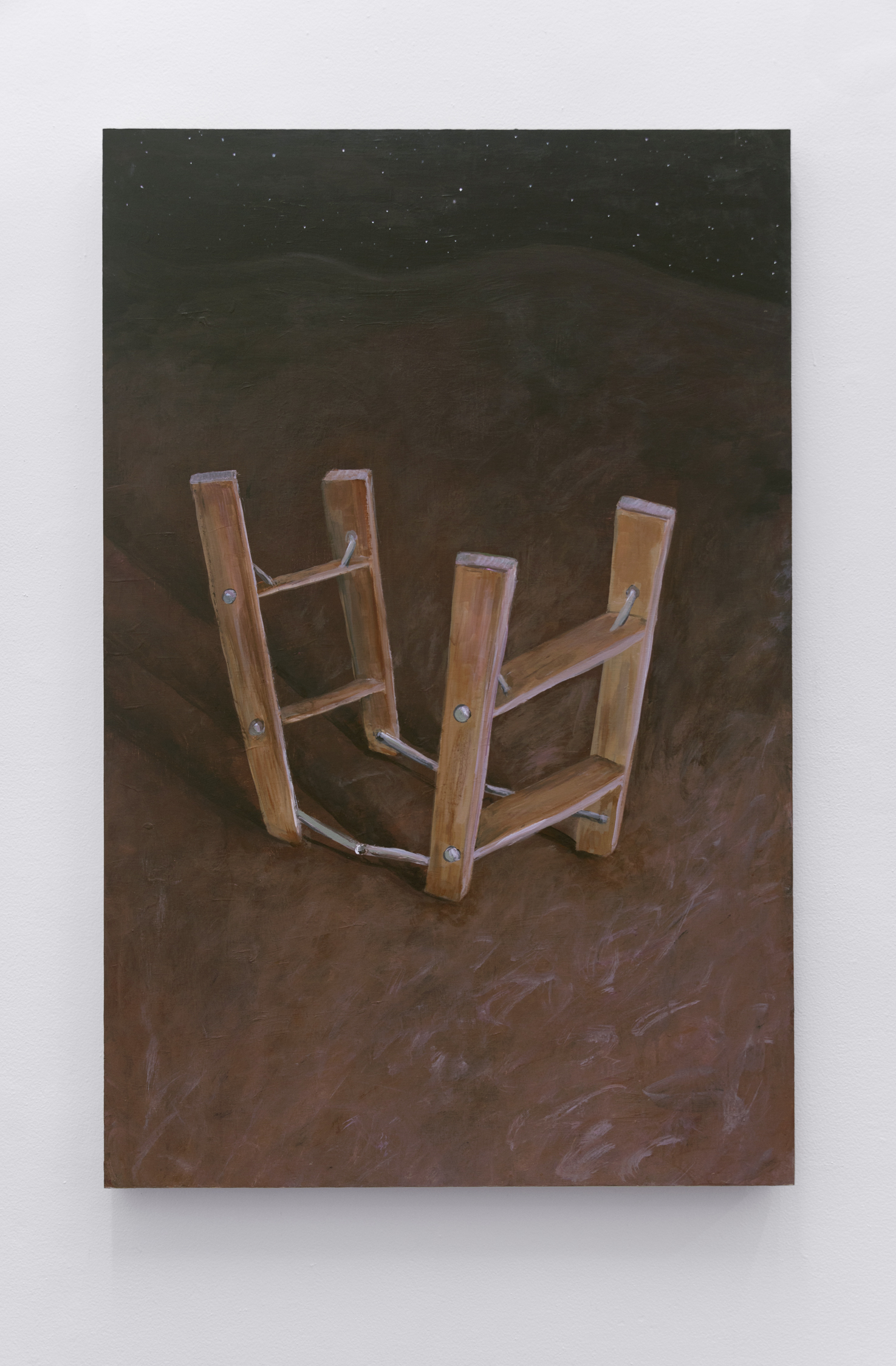 Ladder,  Acrylic and flashe on cradled birch panel 48 x 31.5 in, 2019