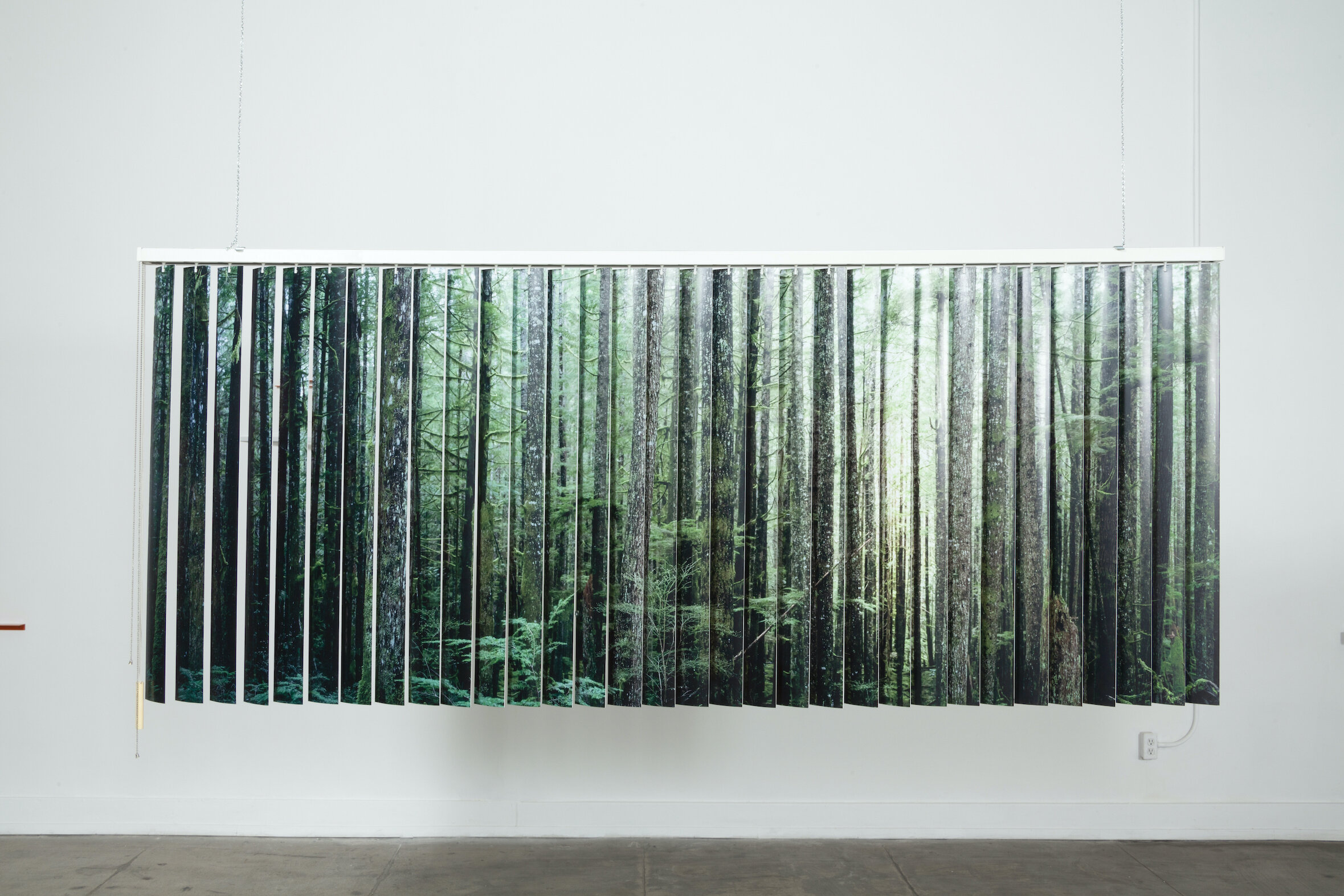 A wide and view of a dense forest in British Columbia/ Carne mista assortita,  2019, Salvaged vertical blinds, vinyl, stock photographs, 101 x 42 x 3 1⁄2 inches