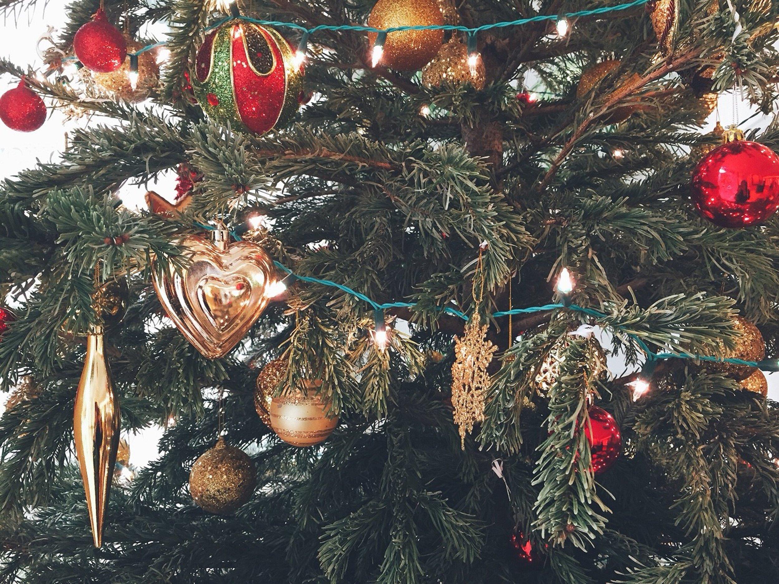 Plan Your Santa Day -