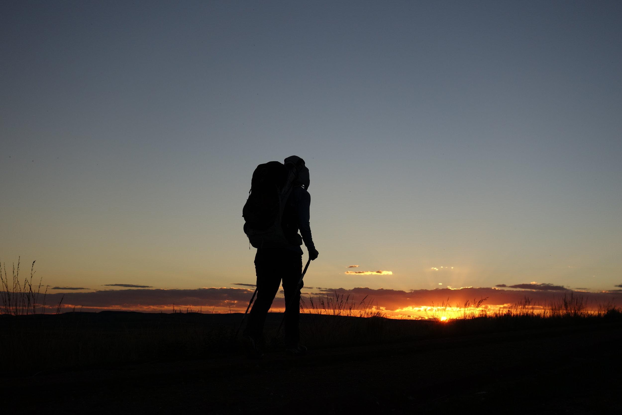 The Best Budget Trekking Poles - Cascade Mountain Tech Carbon FiberRead why→