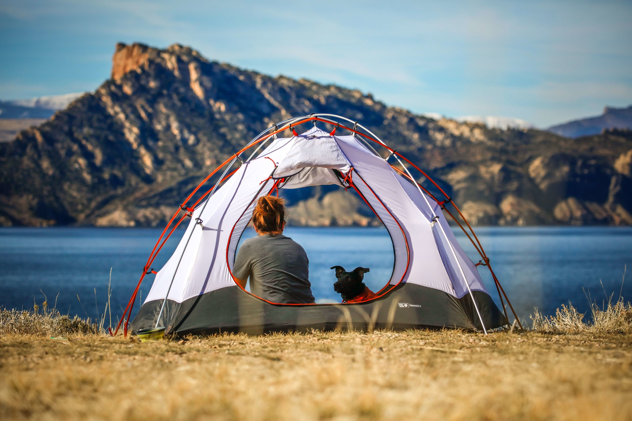 Make sure that your tent is big enough for you and your family (and pets!). This photo shows a backpacking tent, which doesn't have the height of most camping tents we considered. A good camping tent is tall enough to almost stand up in.   Photo by    Patrick Hendry    on    Unsplash