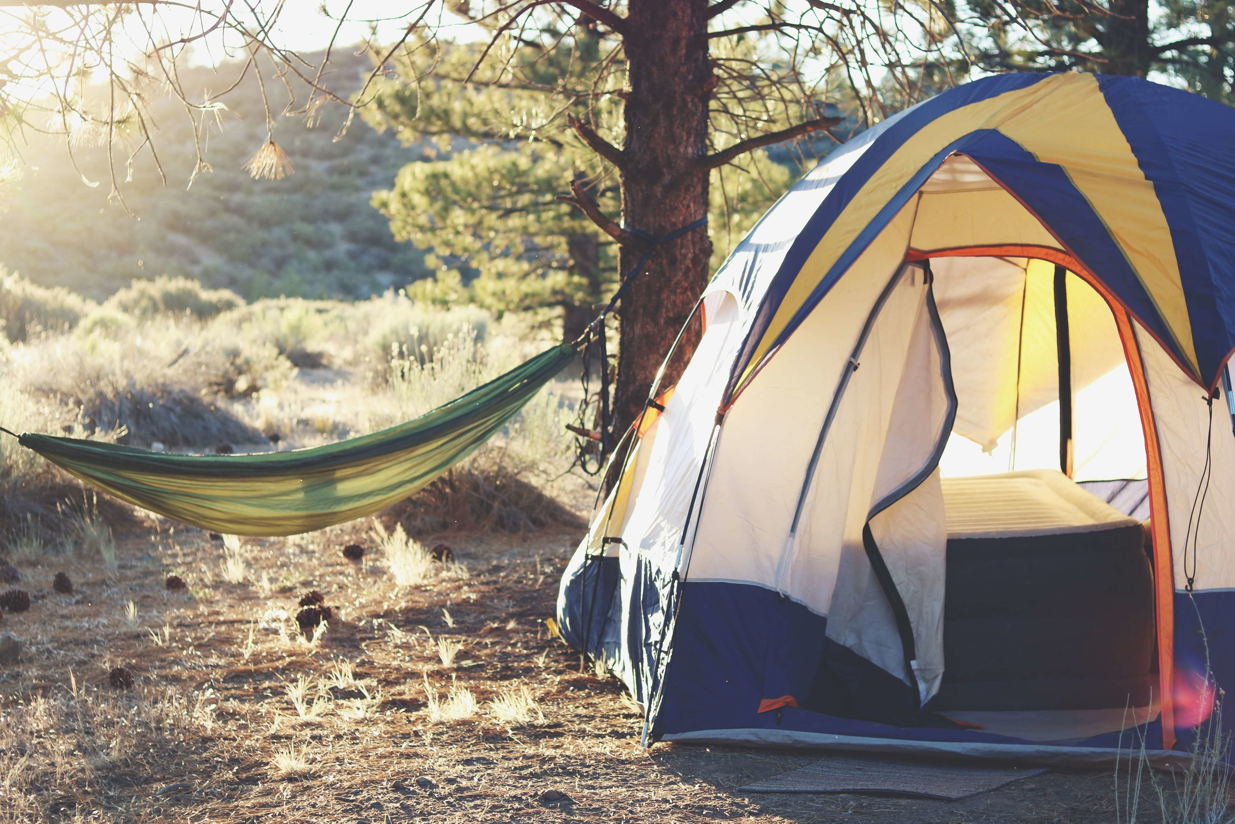 Your tent can use some of the same anchoring systems as your hammock to secure it during windstorms.   Photo by    Laura Pluth    on    Unsplash