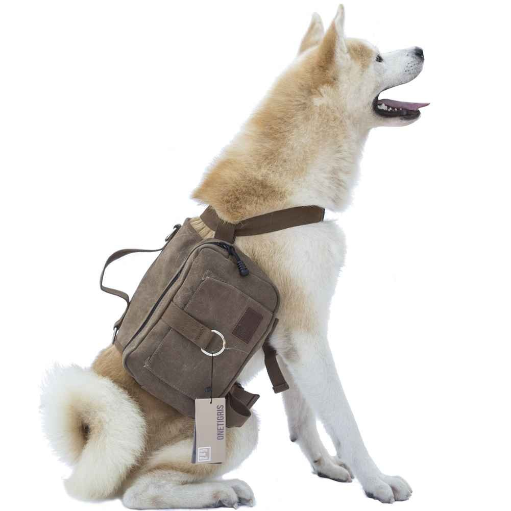 The OneTigris Hoppy Camper pack shown here on a sitting dog.